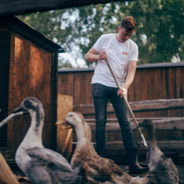 Adis Ahmetovic im Heim für Tiere